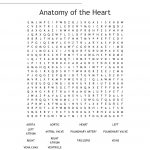 Anatomy Of The Heart Word Search   Wordmint   Printable Grey's Anatomy Crossword Puzzles