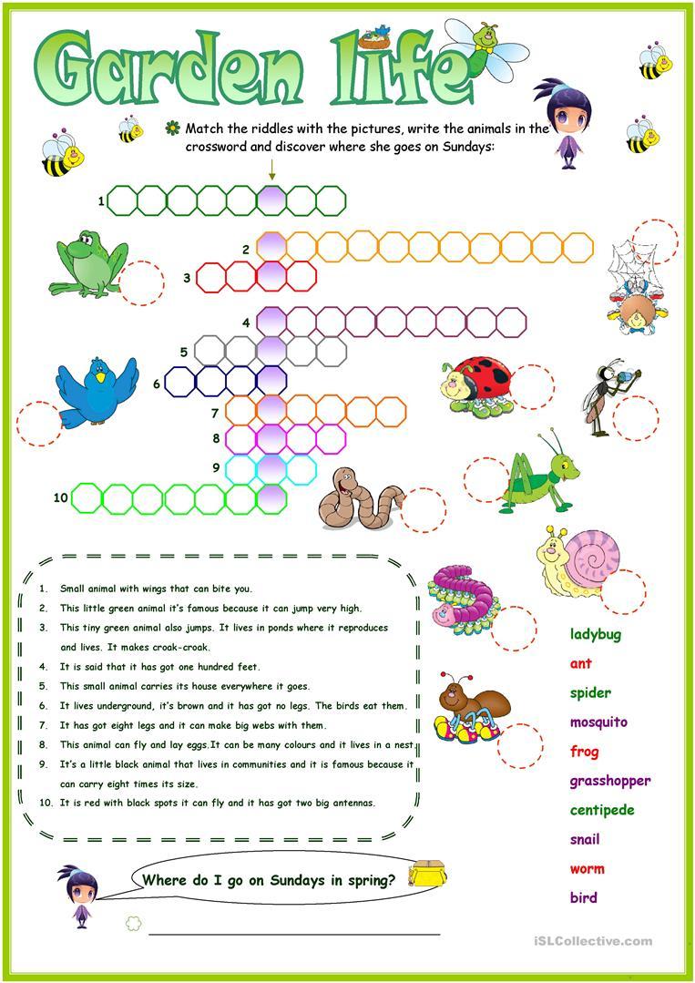 Animals In The Garden Crossword Worksheet - Free Esl Printable - Printable Garden Crosswords