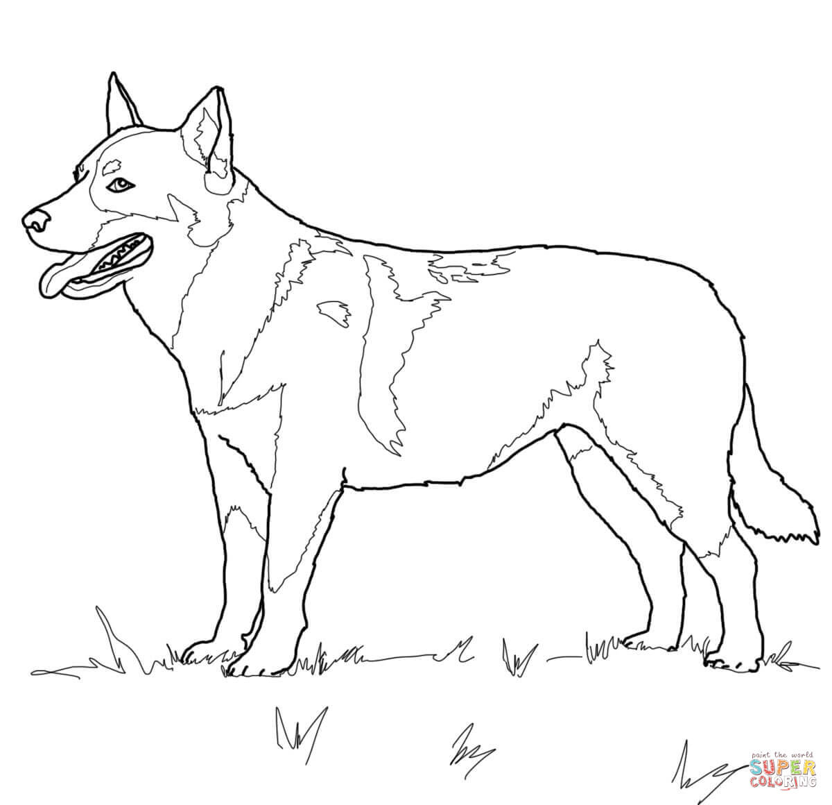 Australian Cattle Dog Coloring Page | Free Printable Coloring Pages - Free Printable Dog Puzzle