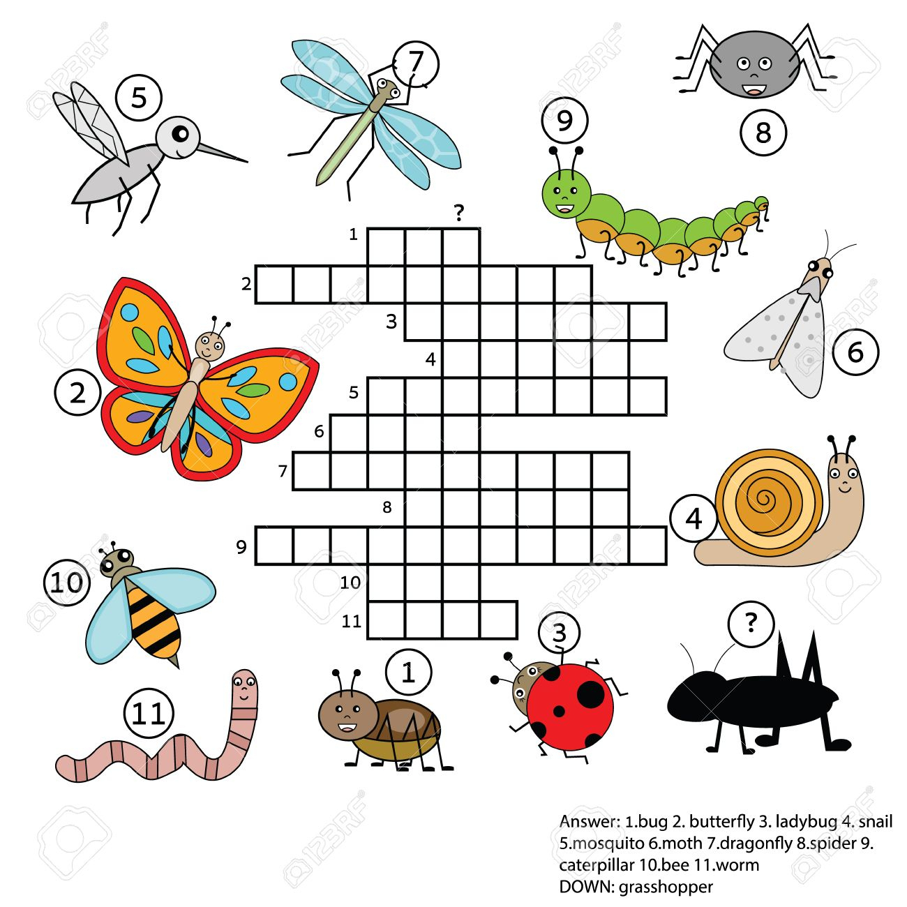 Crossword Educational Children Game With Answer. Learning Vocabulary - Insect Crossword Puzzle Printable