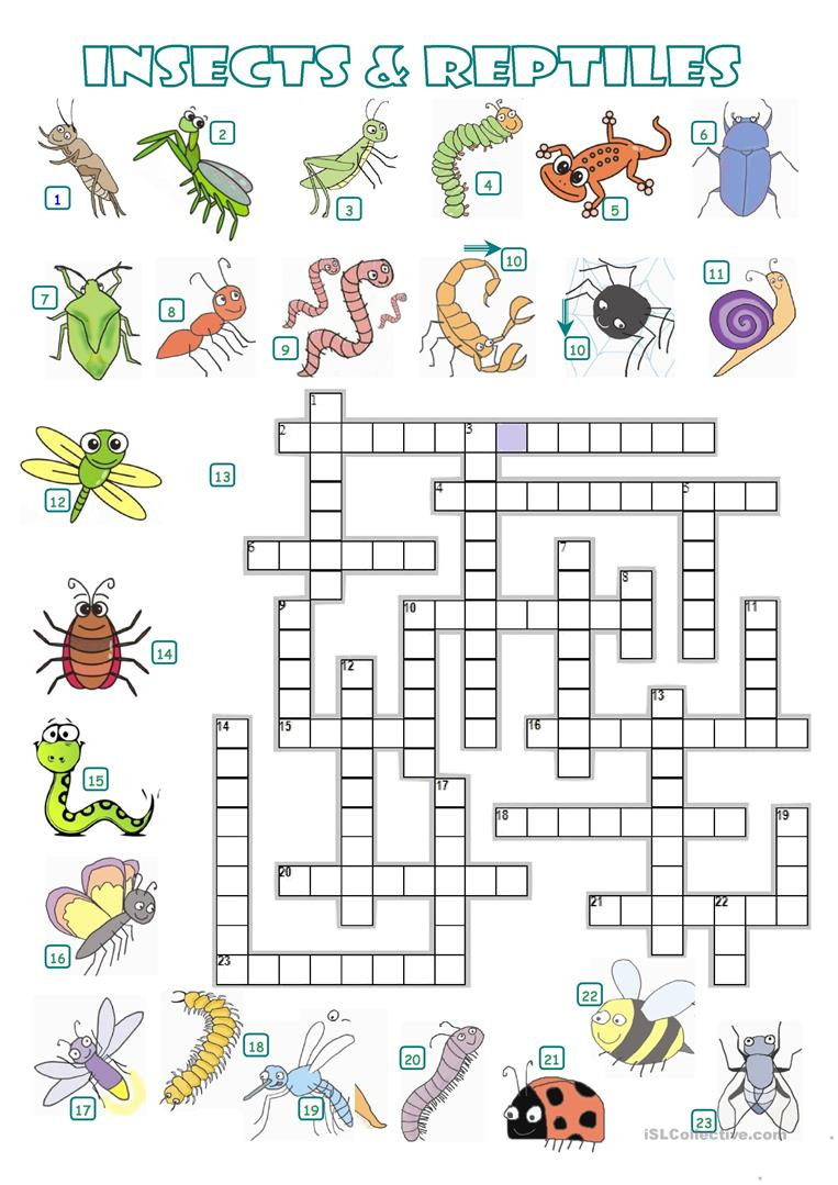 Crossword - Insects And Reptiles Worksheet - Free Esl Printable - Insect Crossword Puzzle Printable