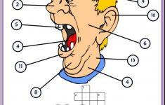 Face Parts Esl Printable Crossword Puzzle Worksheets For Kids   Esl   Printable Face Puzzle