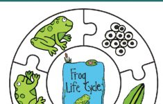 Frog Life Cycle Printable Puzzle   Views From A Step Stool   Printable Puzzles For Preschoolers