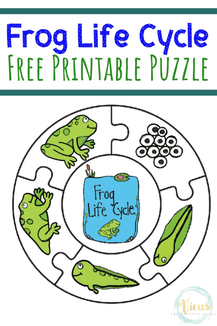 Frog Life Cycle Printable Puzzle - Views From A Step Stool - Printable Toddler Puzzles