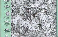 Highlights Hidden Pictures Dinosaur Puzzles Favourite Buku 2   Printable Dinosaur Puzzles