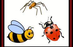 Insect, Bug, & Spider Themed {Free} Preschool Printables | Preschool   Printable Bug Puzzles
