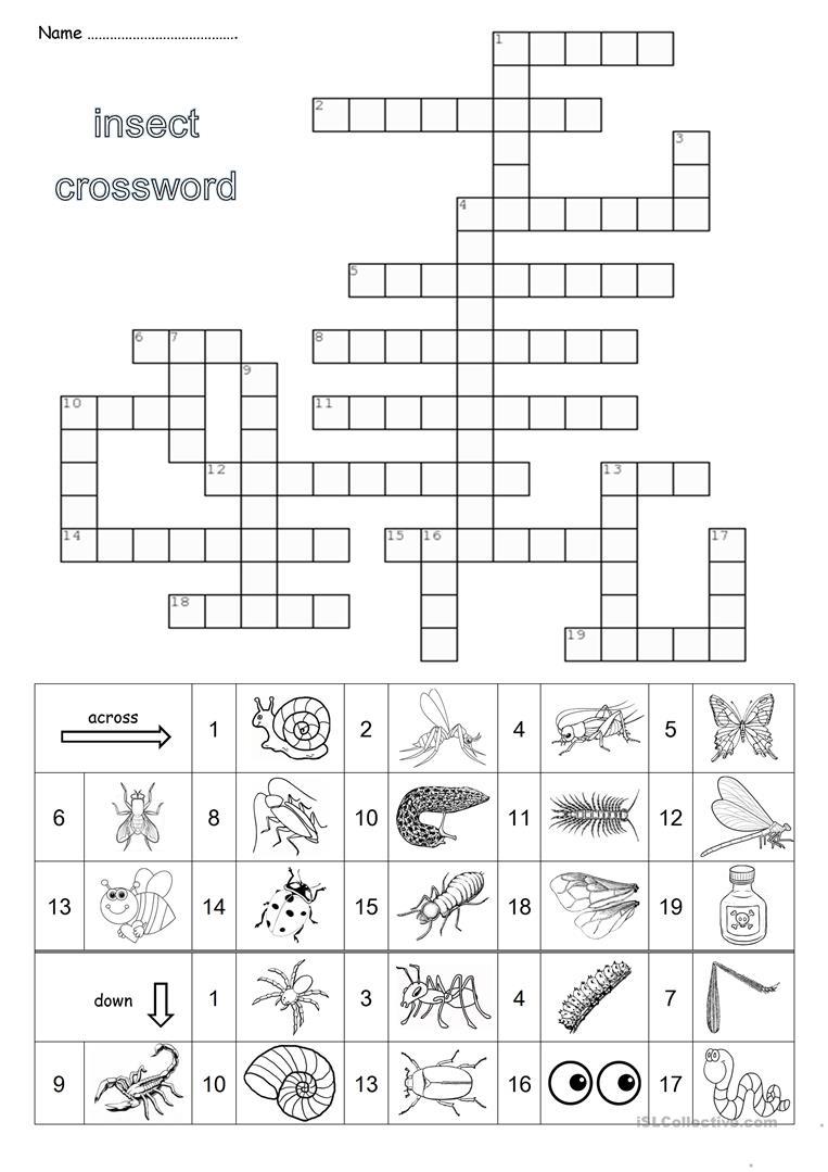 Insect Crossword Worksheet - Free Esl Printable Worksheets Made - Insect Crossword Puzzle Printable