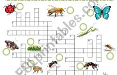 Insects Crossword Puzzle   Esl Worksheetjoeyb1   Insect Crossword Puzzle Printable