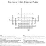 Respiratory System Crossword Puzzle Crossword   Wordmint   Respiratory System Crossword Puzzle Printable