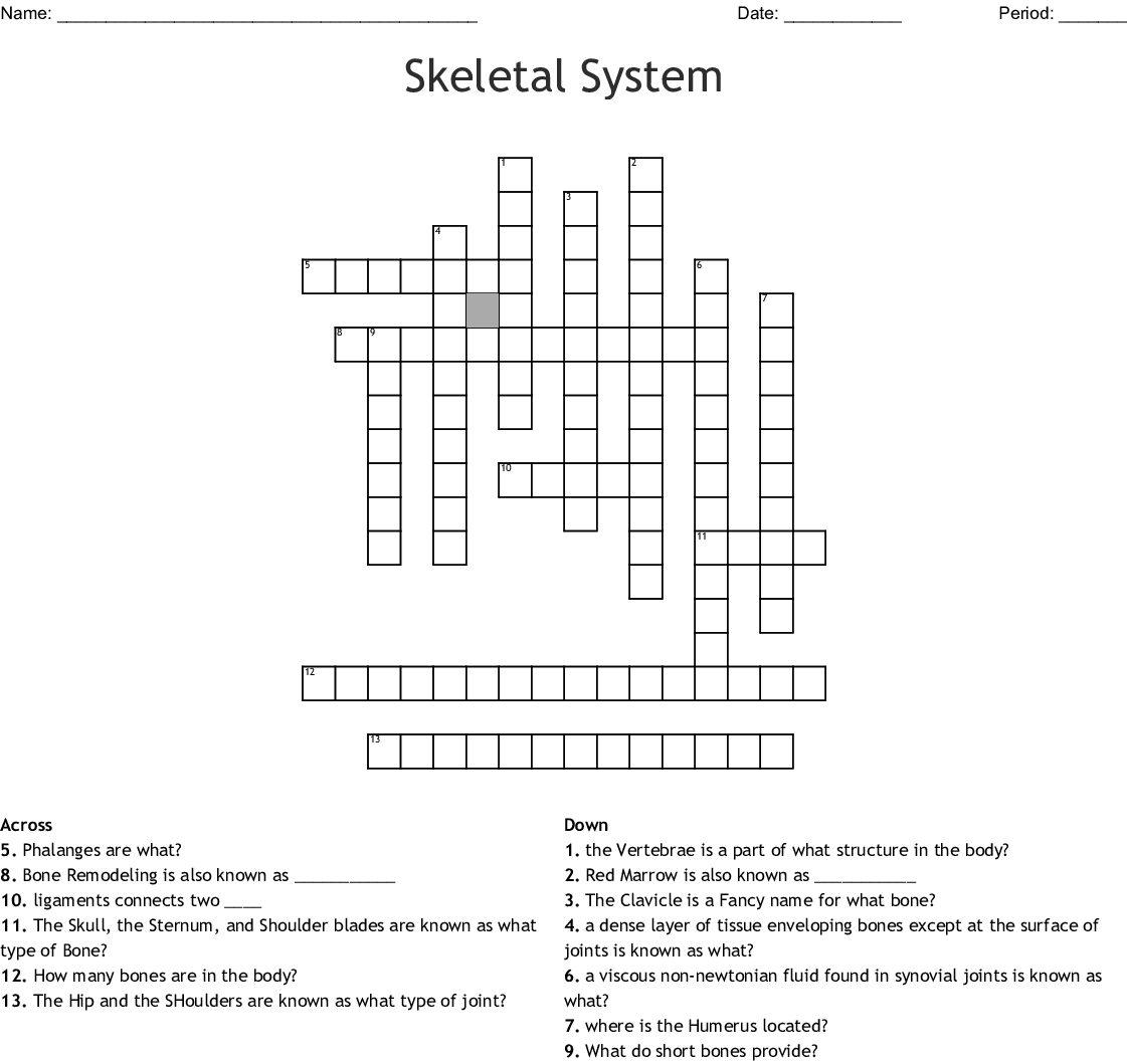Skeletal System Crossword - Wordmint - Skeletal System Crossword Puzzle Printables